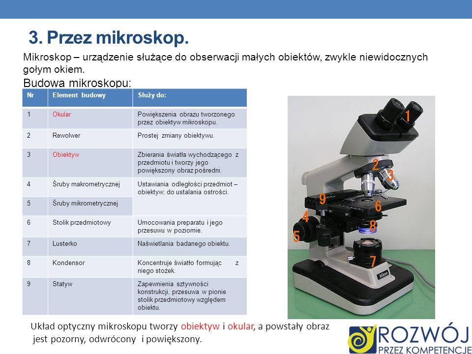 3. Przez mikroskop. Budowa mikroskopu: