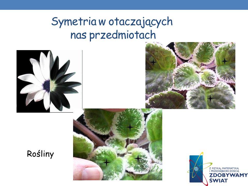 Symetria w otaczających nas przedmiotach