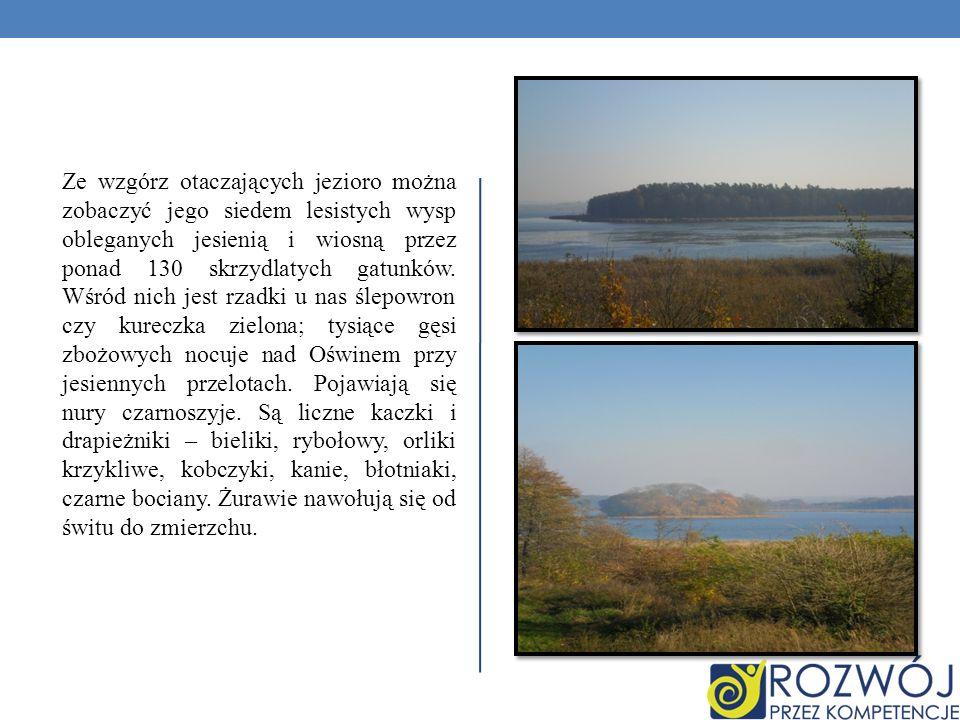 Ze wzgórz otaczających jezioro można zobaczyć jego siedem lesistych wysp obleganych jesienią i wiosną przez ponad 130 skrzydlatych gatunków.