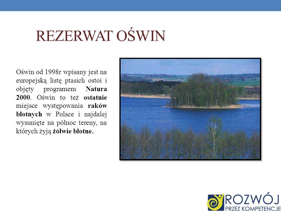 Rezerwat Oświn