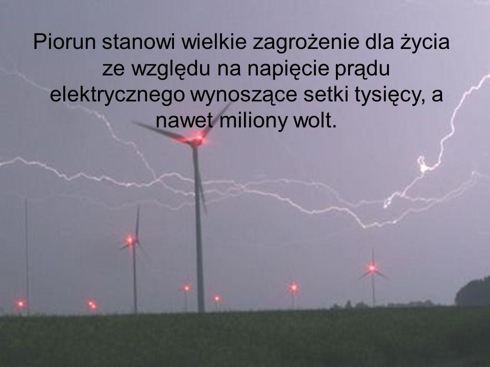 Piorun stanowi wielkie zagrożenie dla życia ze względu na napięcie prądu elektrycznego wynoszące setki tysięcy, a nawet miliony wolt.