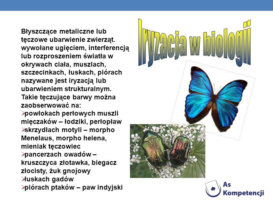Iryzacja w biologii