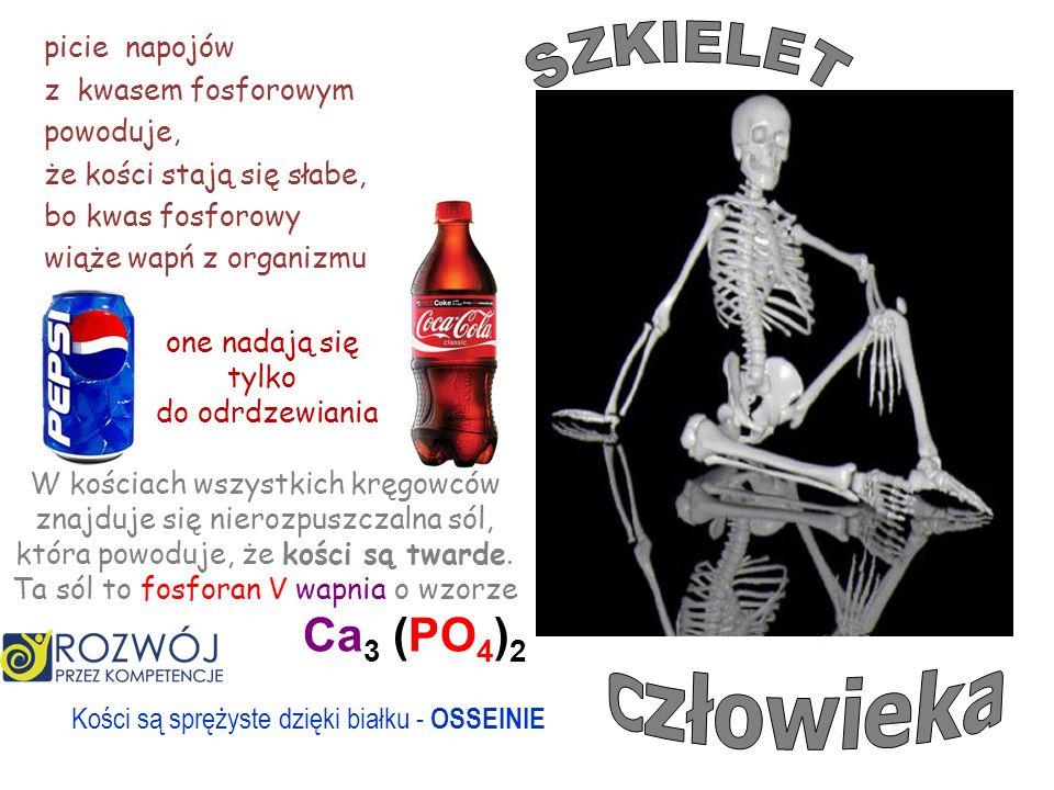 SZKIELET człowieka Ca3 (PO4)2 picie napojów z kwasem fosforowym