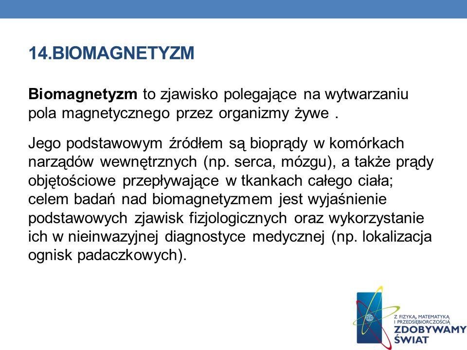 14.BIOMAGNETYZM