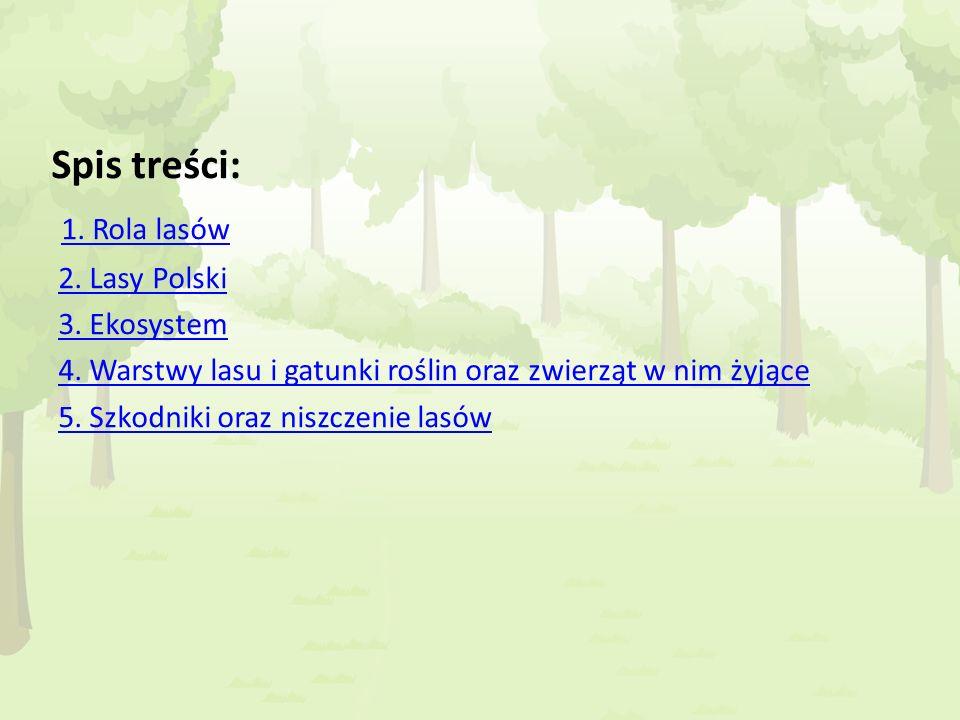 Spis treści: 1. Rola lasów 2. Lasy Polski 3. Ekosystem