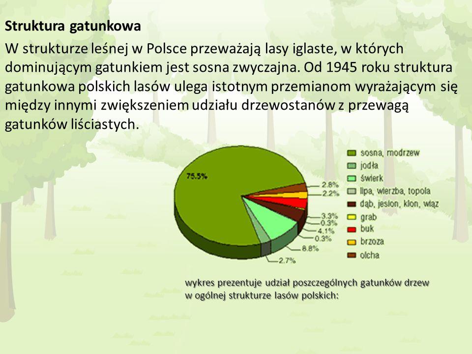 Struktura gatunkowa W strukturze leśnej w Polsce przeważają lasy iglaste, w których dominującym gatunkiem jest sosna zwyczajna. Od 1945 roku struktura gatunkowa polskich lasów ulega istotnym przemianom wyrażającym się między innymi zwiększeniem udziału drzewostanów z przewagą gatunków liściastych.