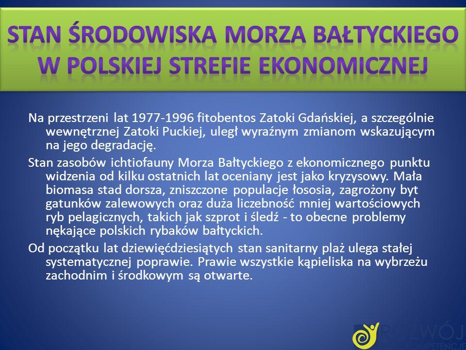 Stan środowiska Morza Bałtyckiego w polskiej strefie ekonomicznej