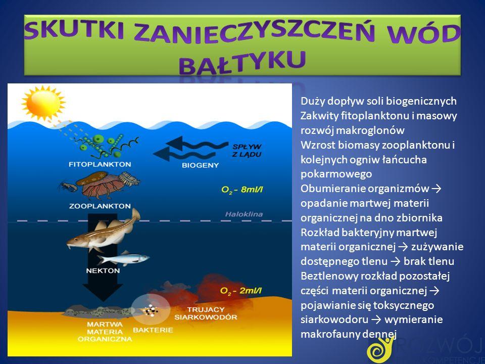 Skutki zanieczyszczeń wód Bałtyku