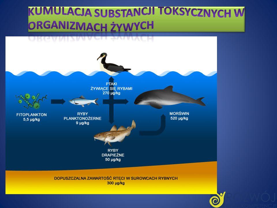 Kumulacja substancji toksycznych w organizmach żywych