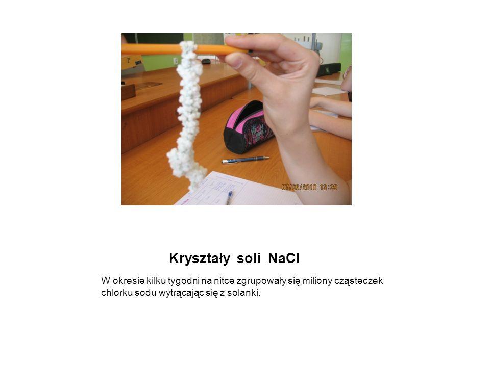 Kryształy soli NaClW okresie kilku tygodni na nitce zgrupowały się miliony cząsteczek chlorku sodu wytrącając się z solanki.