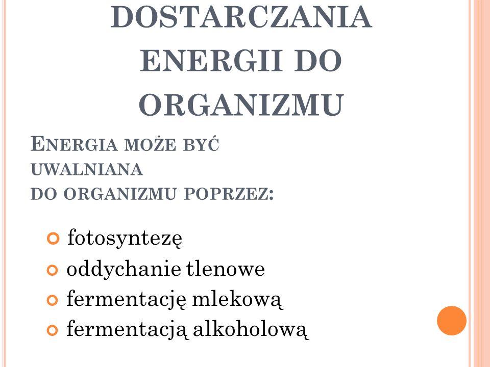 Energia może być uwalniana do organizmu poprzez: