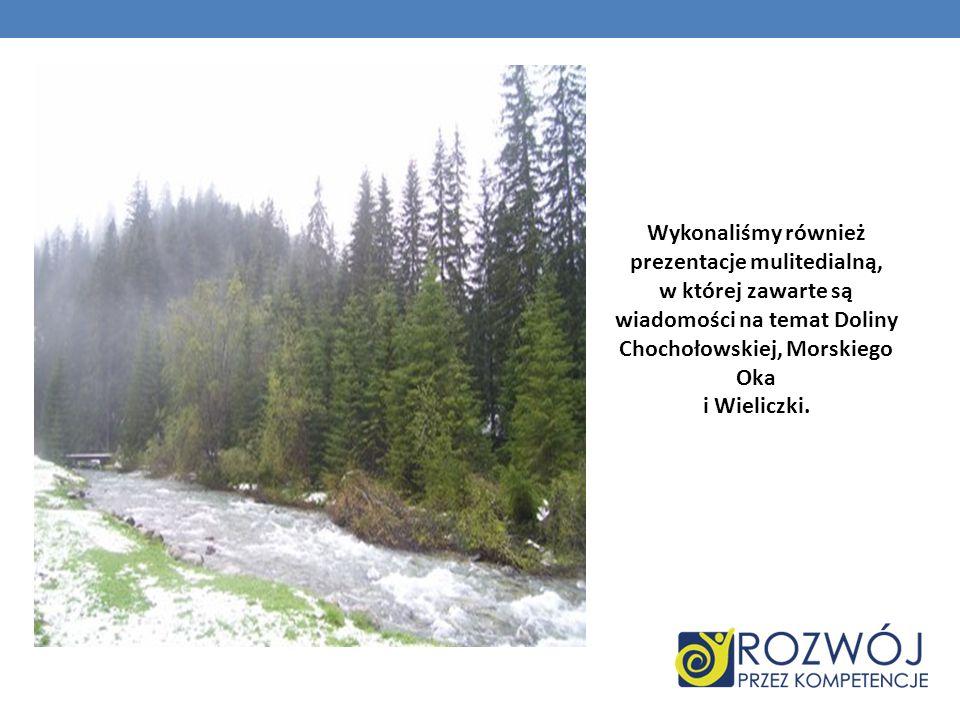Wykonaliśmy również prezentacje mulitedialną, w której zawarte są wiadomości na temat Doliny Chochołowskiej, Morskiego Oka i Wieliczki.