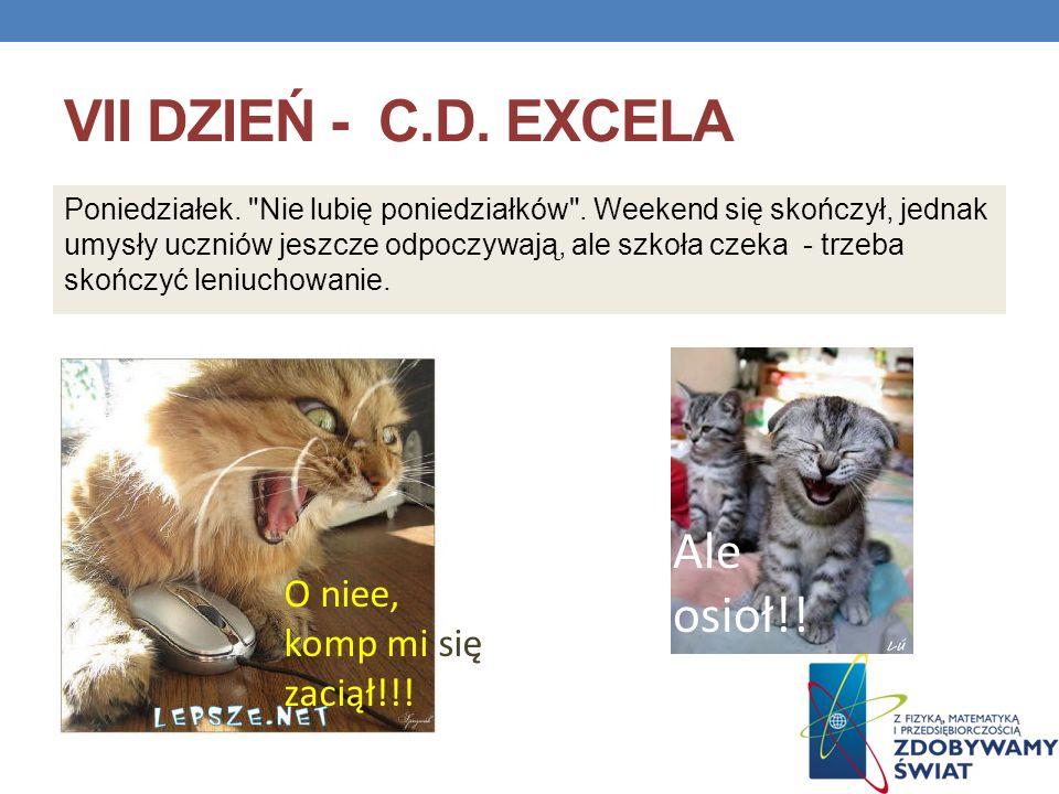 VII dzień - c.d. Excela Ale osioł!! O niee, komp mi się zaciął!!!
