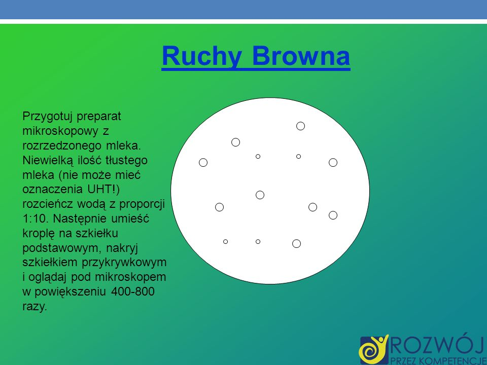 Ruchy Browna