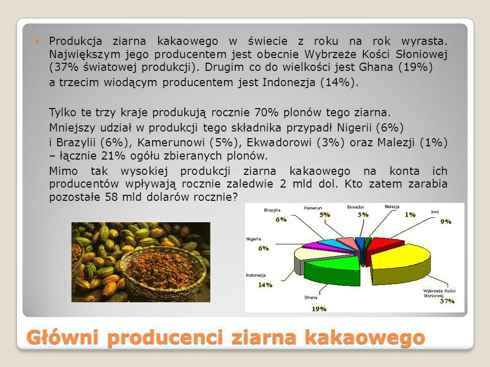 Główni producenci ziarna kakaowego