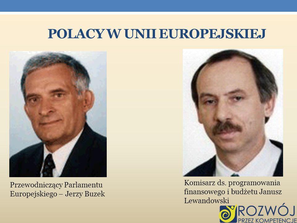Polacy w Unii Europejskiej