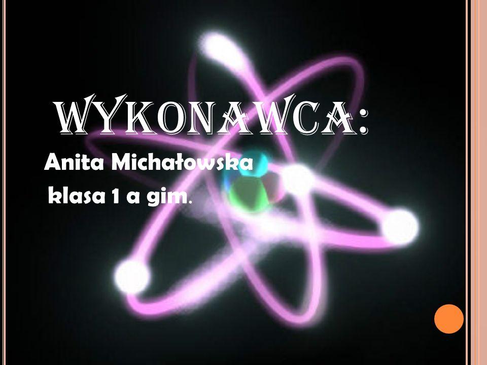 Wykonawca: Anita Michałowska