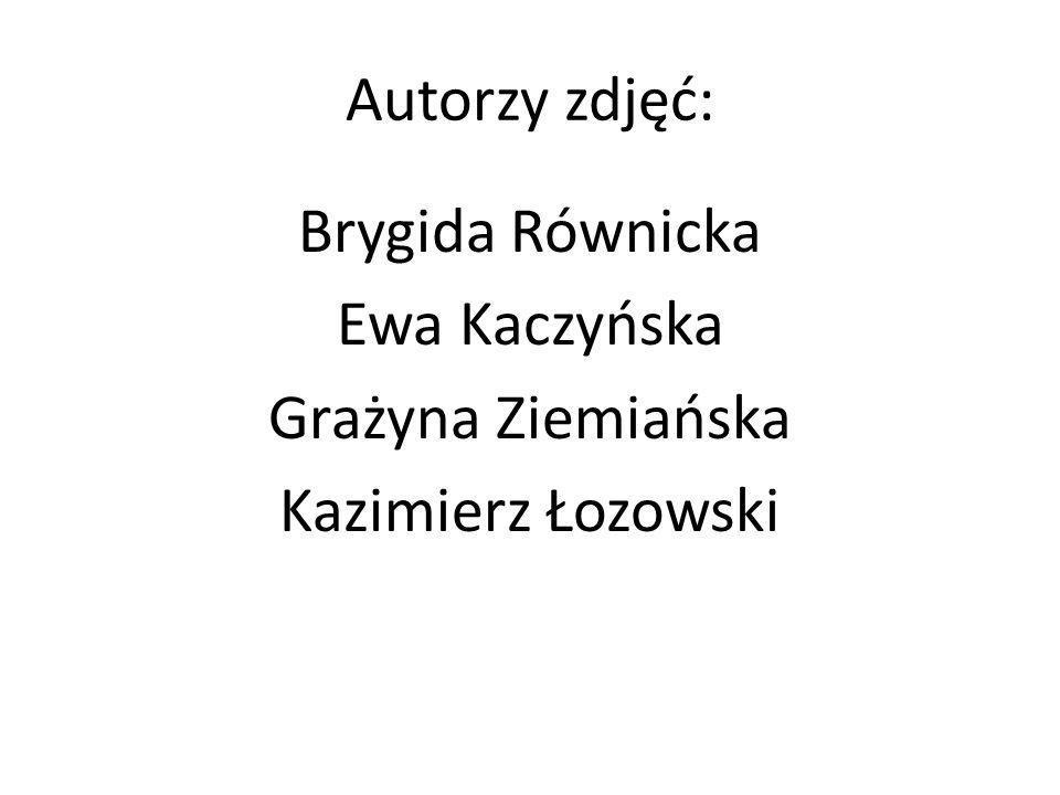 Brygida Równicka Ewa Kaczyńska Grażyna Ziemiańska Kazimierz Łozowski
