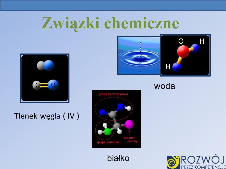 Związki chemiczne woda Tlenek węgla ( IV ) białko