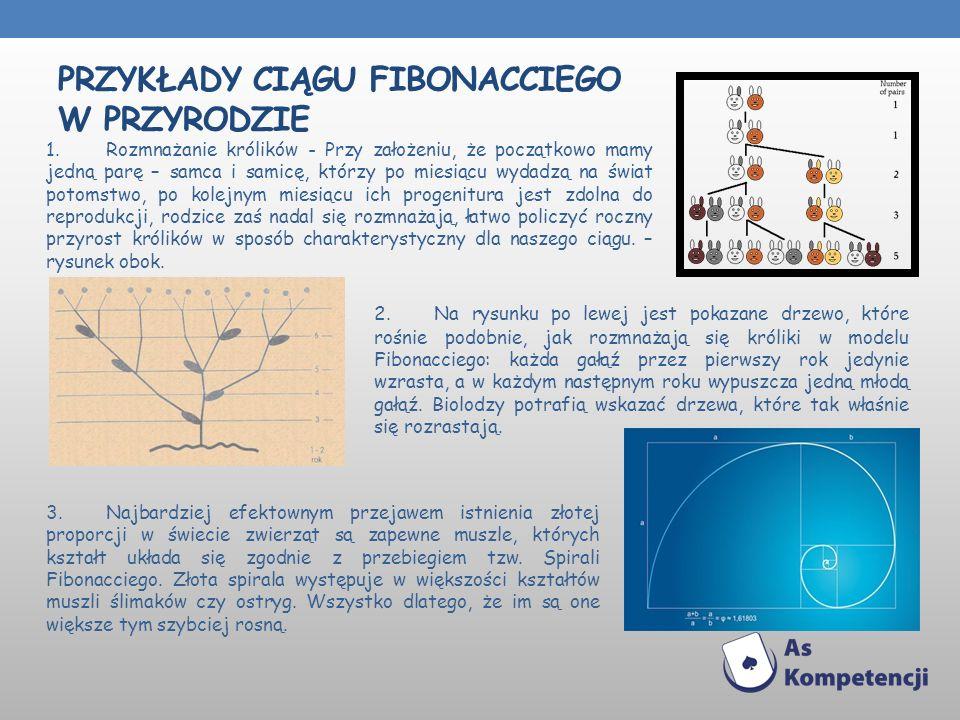 Przykłady Ciągu Fibonacciego w przyrodzie