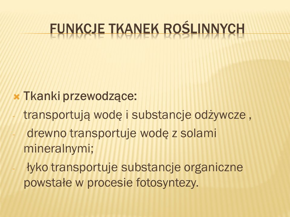 Funkcje tkanek roślinnych