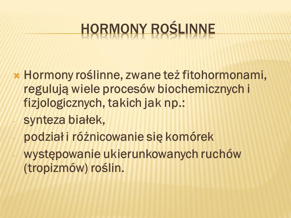 Hormony roślinne Hormony roślinne, zwane też fitohormonami, regulują wiele procesów biochemicznych i fizjologicznych, takich jak np.: