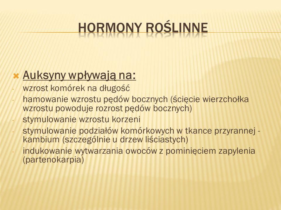 Hormony roślinne Auksyny wpływają na: wzrost komórek na długość