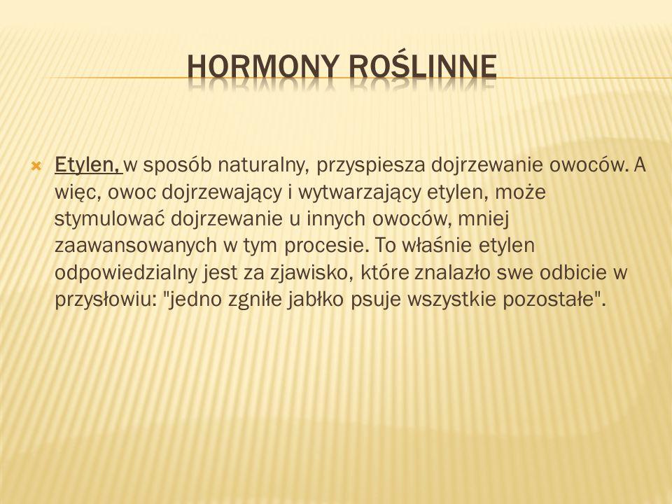 Hormony roślinne