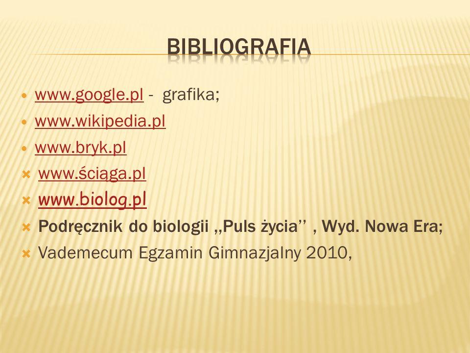 bibliografia www.google.pl - grafika; www.wikipedia.pl www.bryk.pl