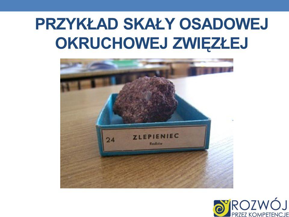 Przykład skały osadowej okruchowej zwięzłej