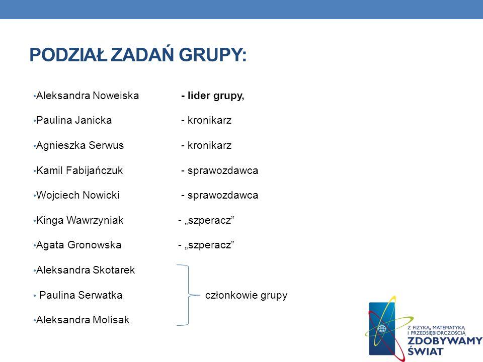 Podział zadań grupy: Aleksandra Noweiska - lider grupy,