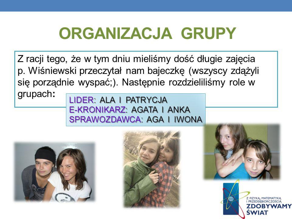 Organizacja grupy