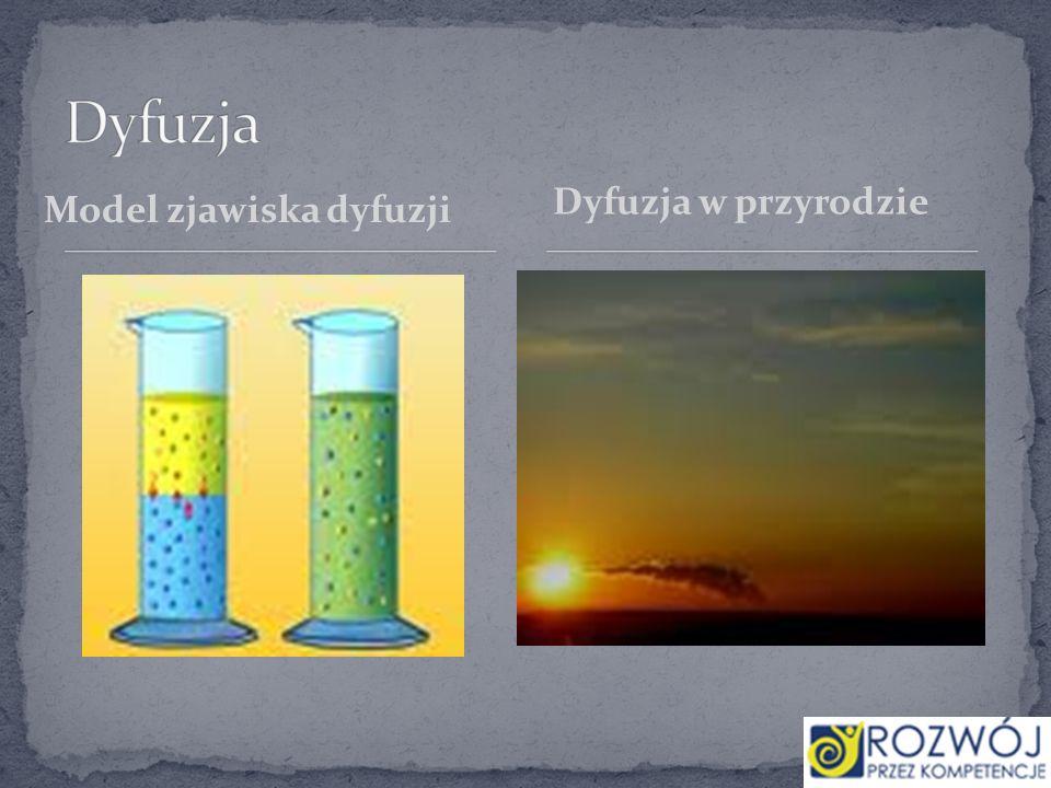 Dyfuzja Dyfuzja w przyrodzie Model zjawiska dyfuzji
