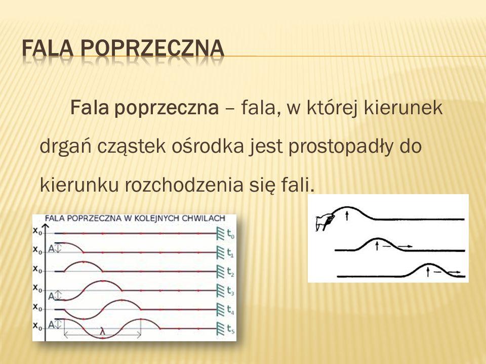 Fala poprzeczna Fala poprzeczna – fala, w której kierunek drgań cząstek ośrodka jest prostopadły do kierunku rozchodzenia się fali.
