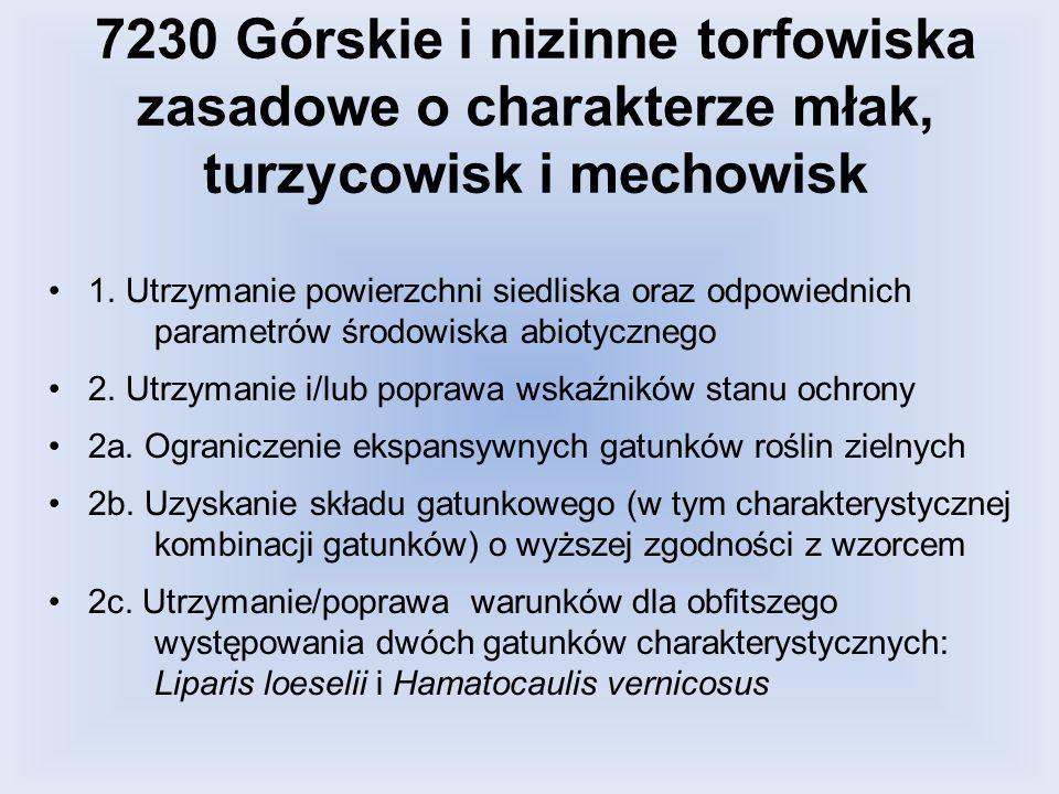 7230 Górskie i nizinne torfowiska zasadowe o charakterze młak, turzycowisk i mechowisk