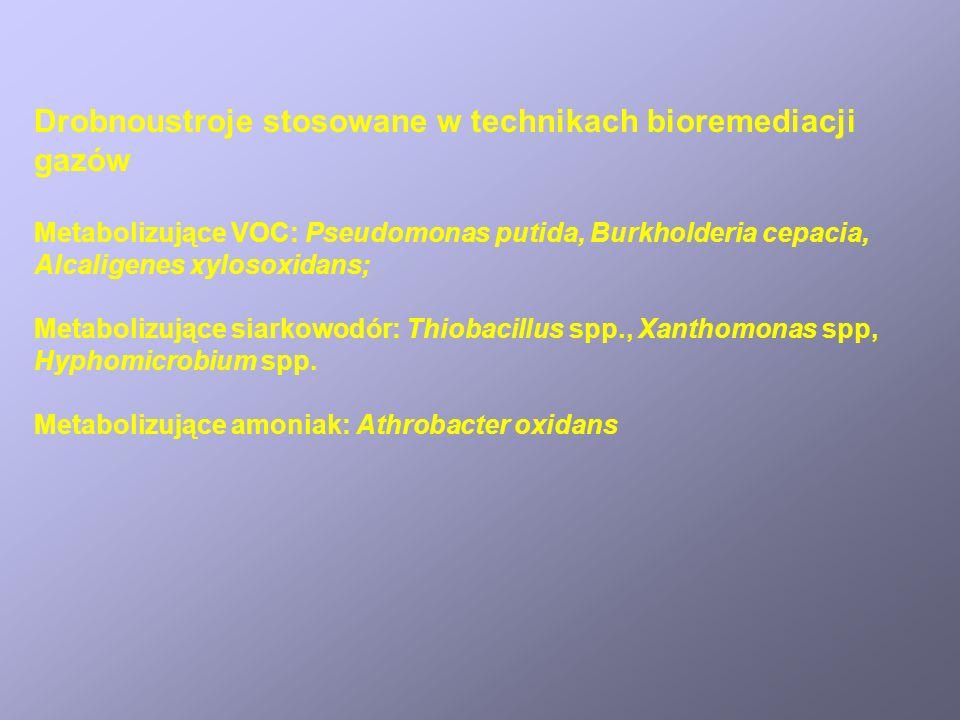Drobnoustroje stosowane w technikach bioremediacji gazów