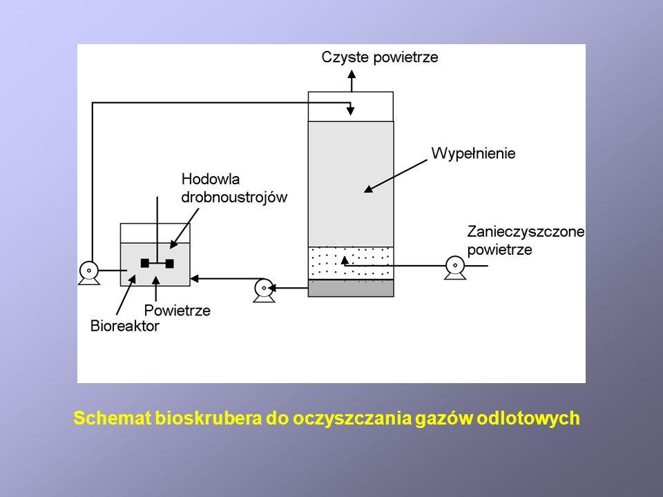 Schemat bioskrubera do oczyszczania gazów odlotowych