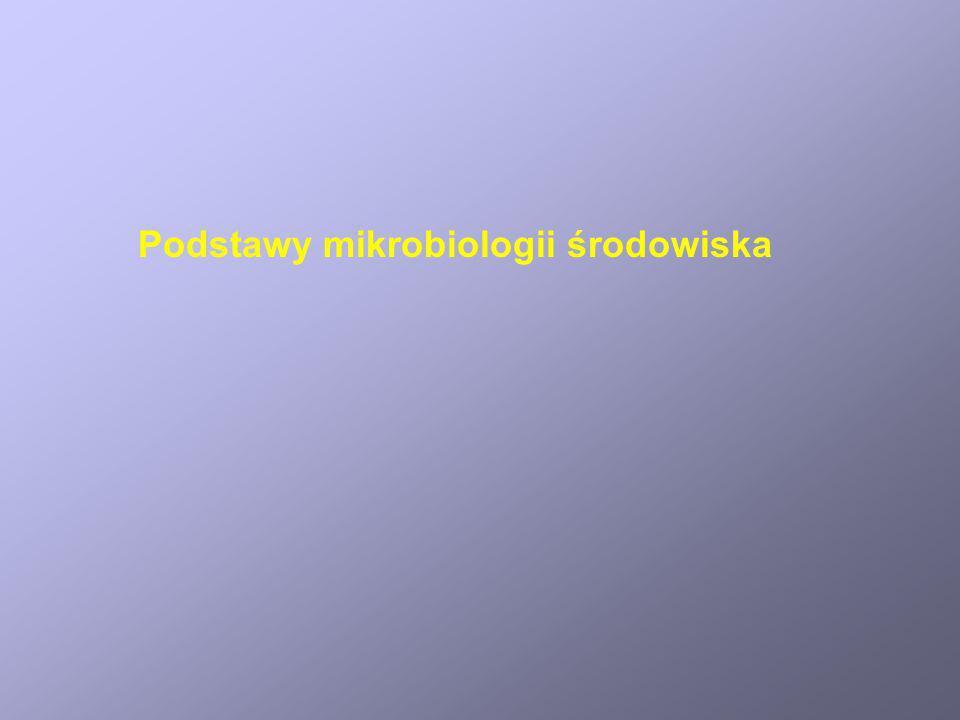 Podstawy mikrobiologii środowiska