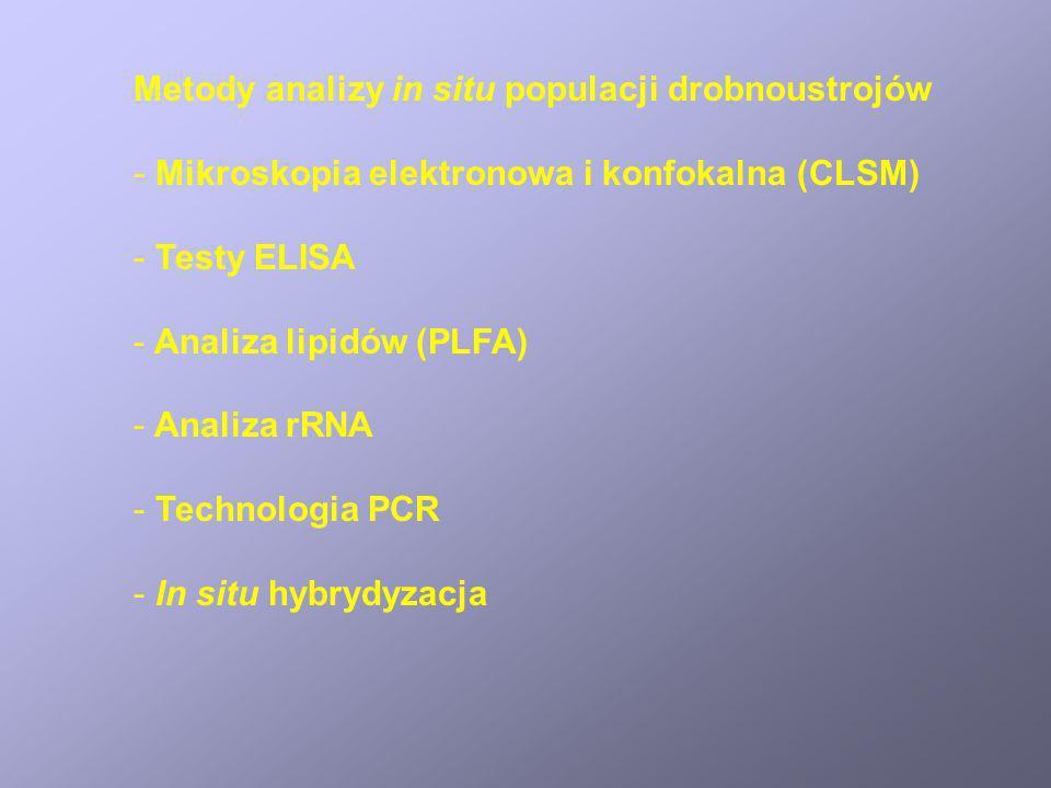 Metody analizy in situ populacji drobnoustrojów