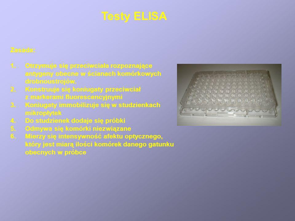 Testy ELISA Zasada: Otrzymuje się przeciwciała rozpoznające