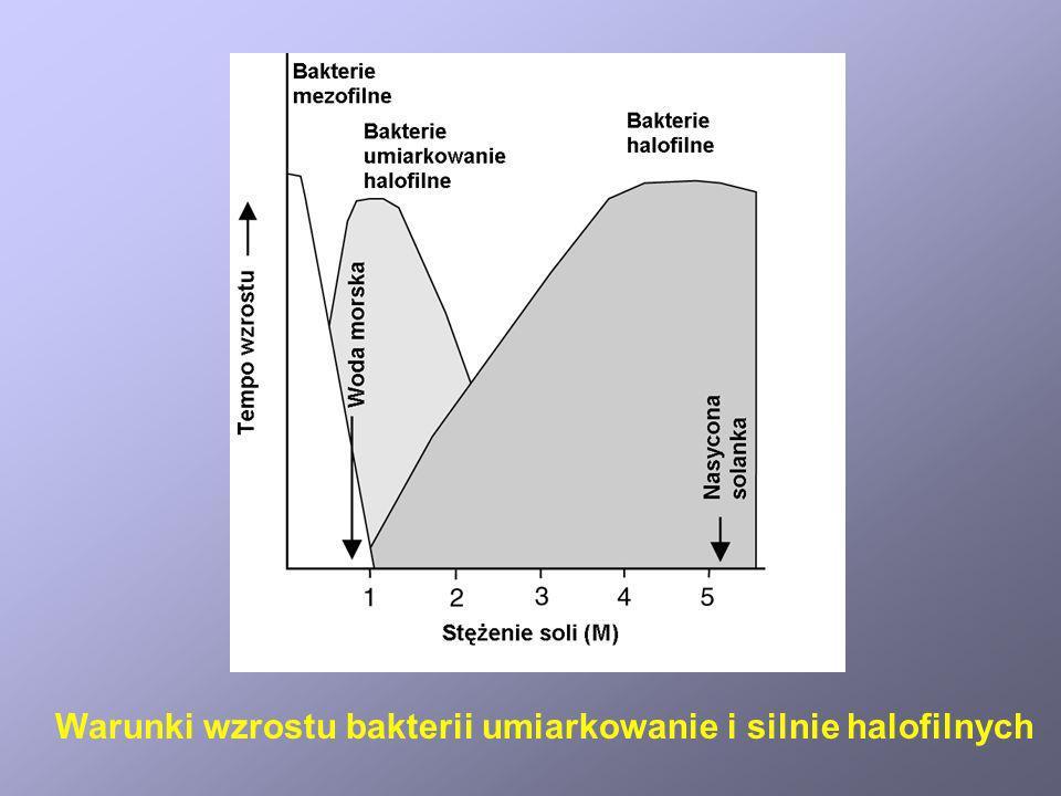 Warunki wzrostu bakterii umiarkowanie i silnie halofilnych