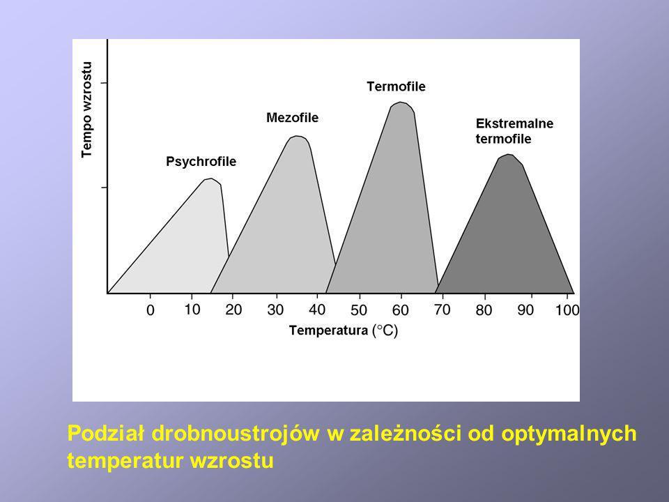Podział drobnoustrojów w zależności od optymalnych
