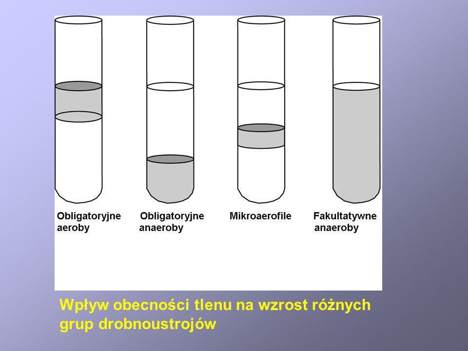 Wpływ obecności tlenu na wzrost różnych