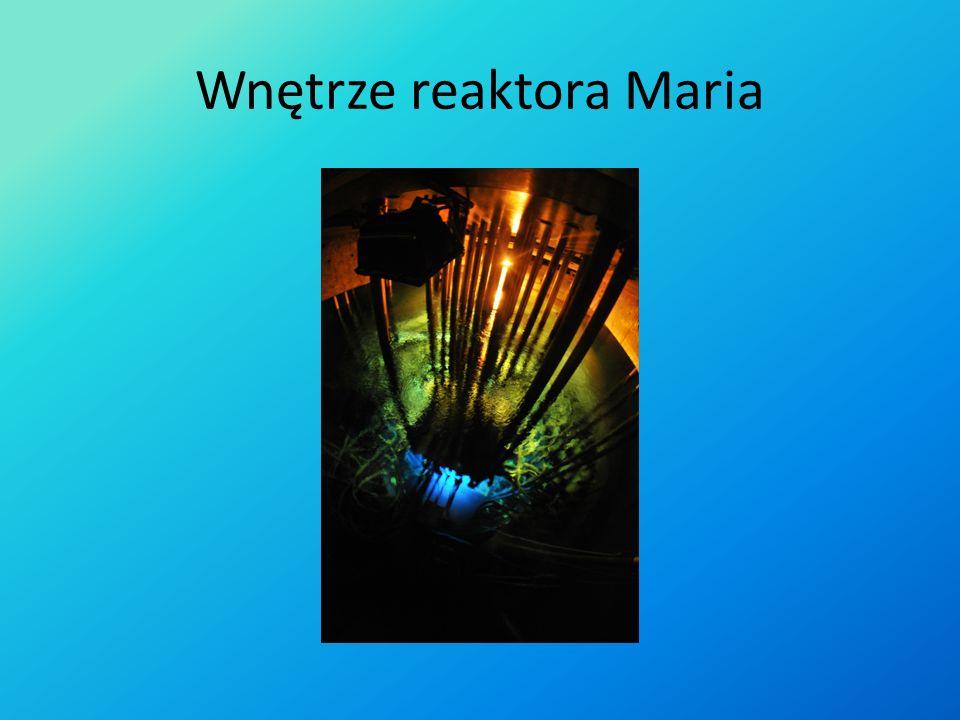 Wnętrze reaktora Maria