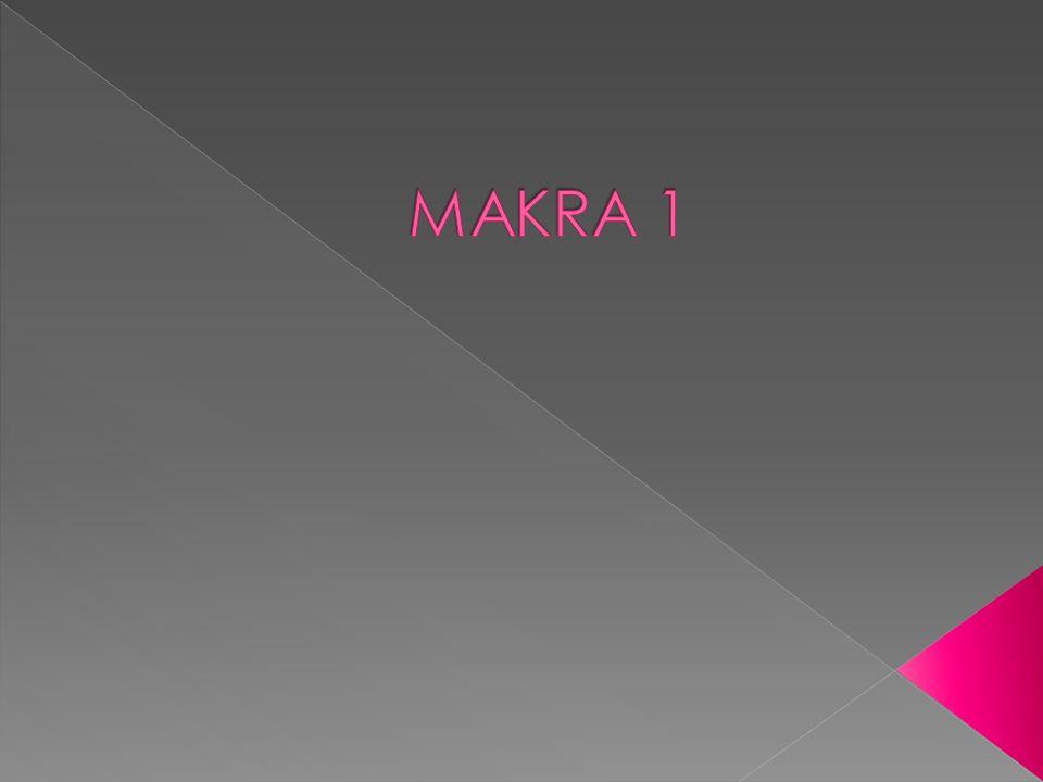 MAKRA 1