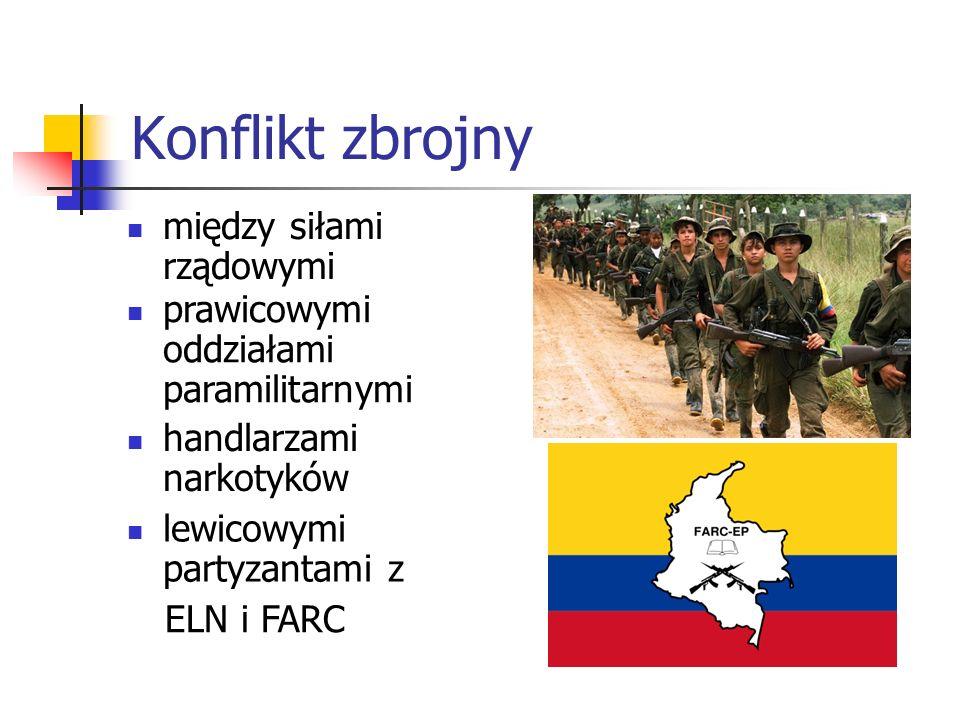 Konflikt zbrojny między siłami rządowymi