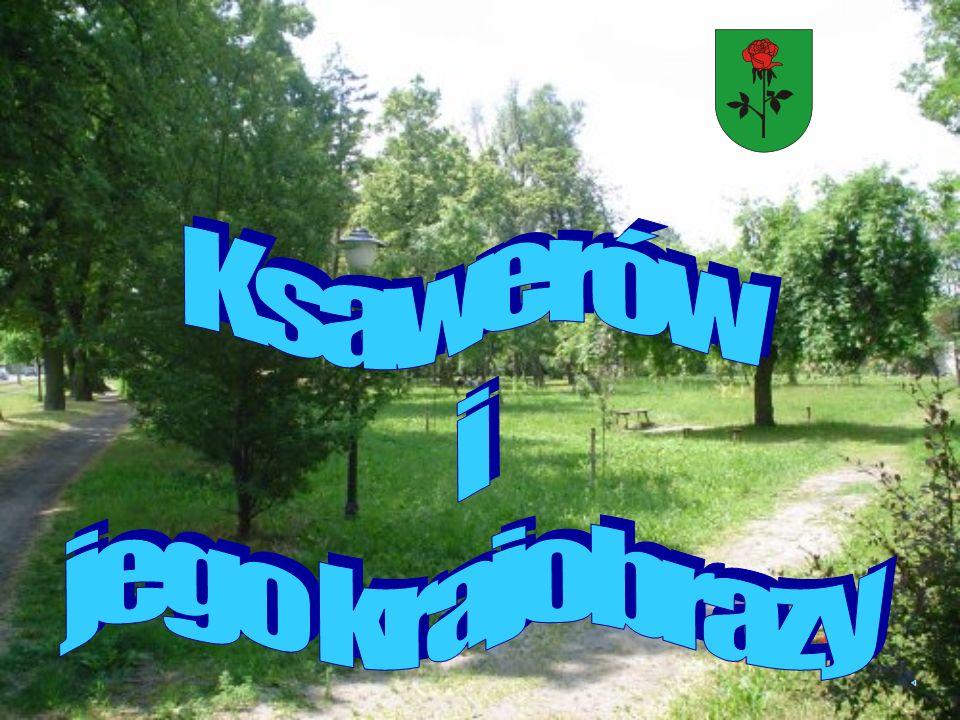 Ksawerów i jego krajobrazy