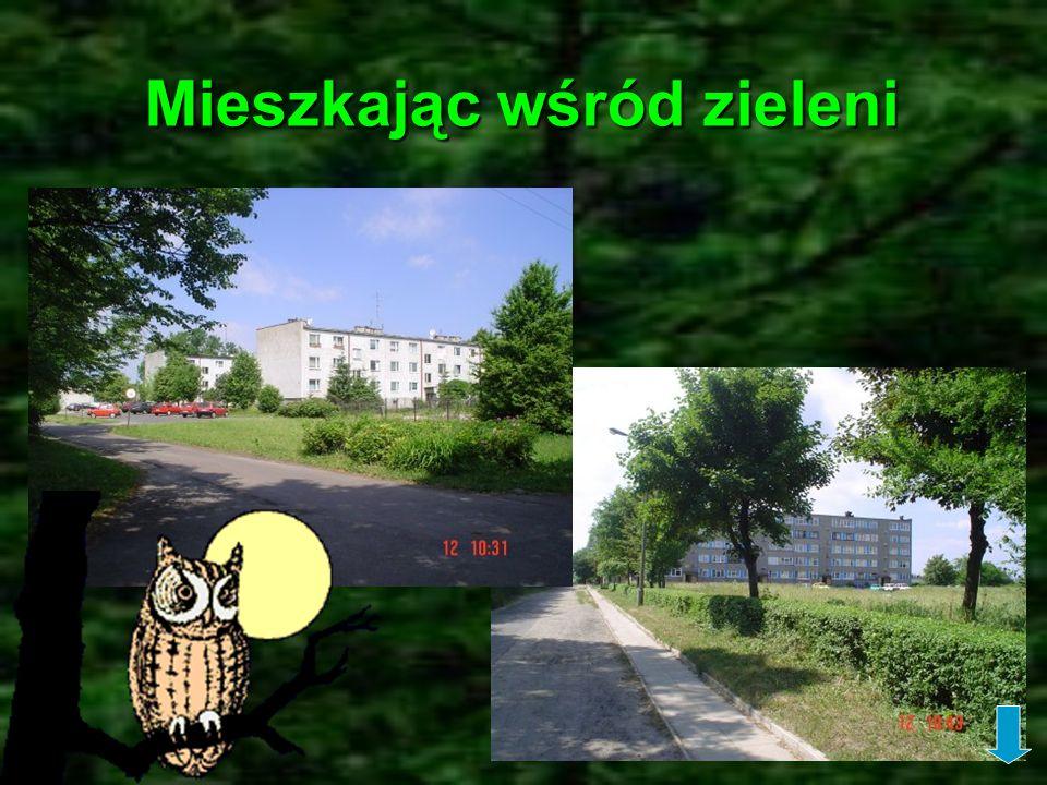 Mieszkając wśród zieleni