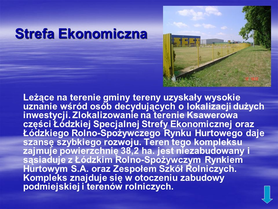 Strefa Ekonomiczna