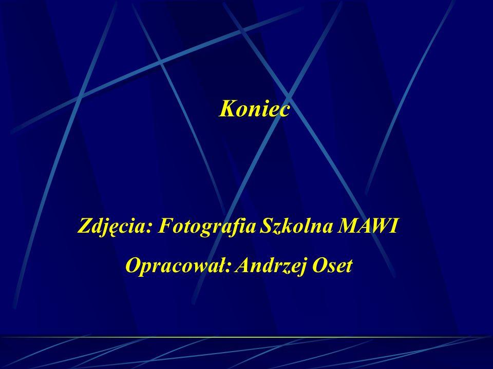 Zdjęcia: Fotografia Szkolna MAWI Opracował: Andrzej Oset